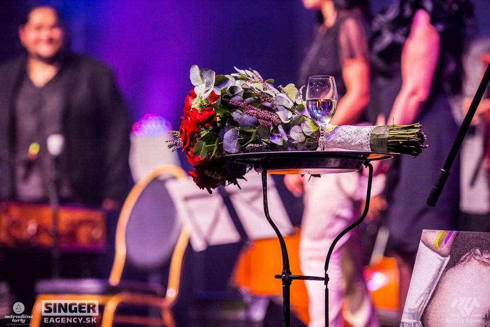 eventova-agentura-singer-koncert-lucie-bila-ciganski-diabli-zilina-59
